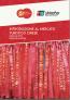 Ebook Introduzione al mercato turistico cinese